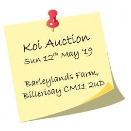 Crouch Valley Koi Spring Auction